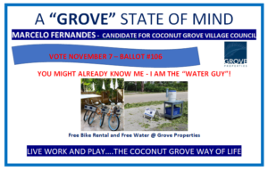 coconut grove village